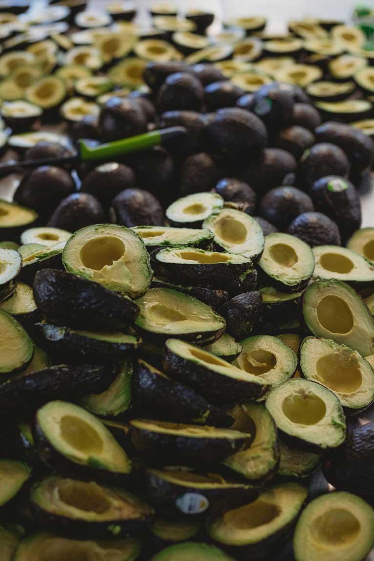 guac-shop-avocados-optimized